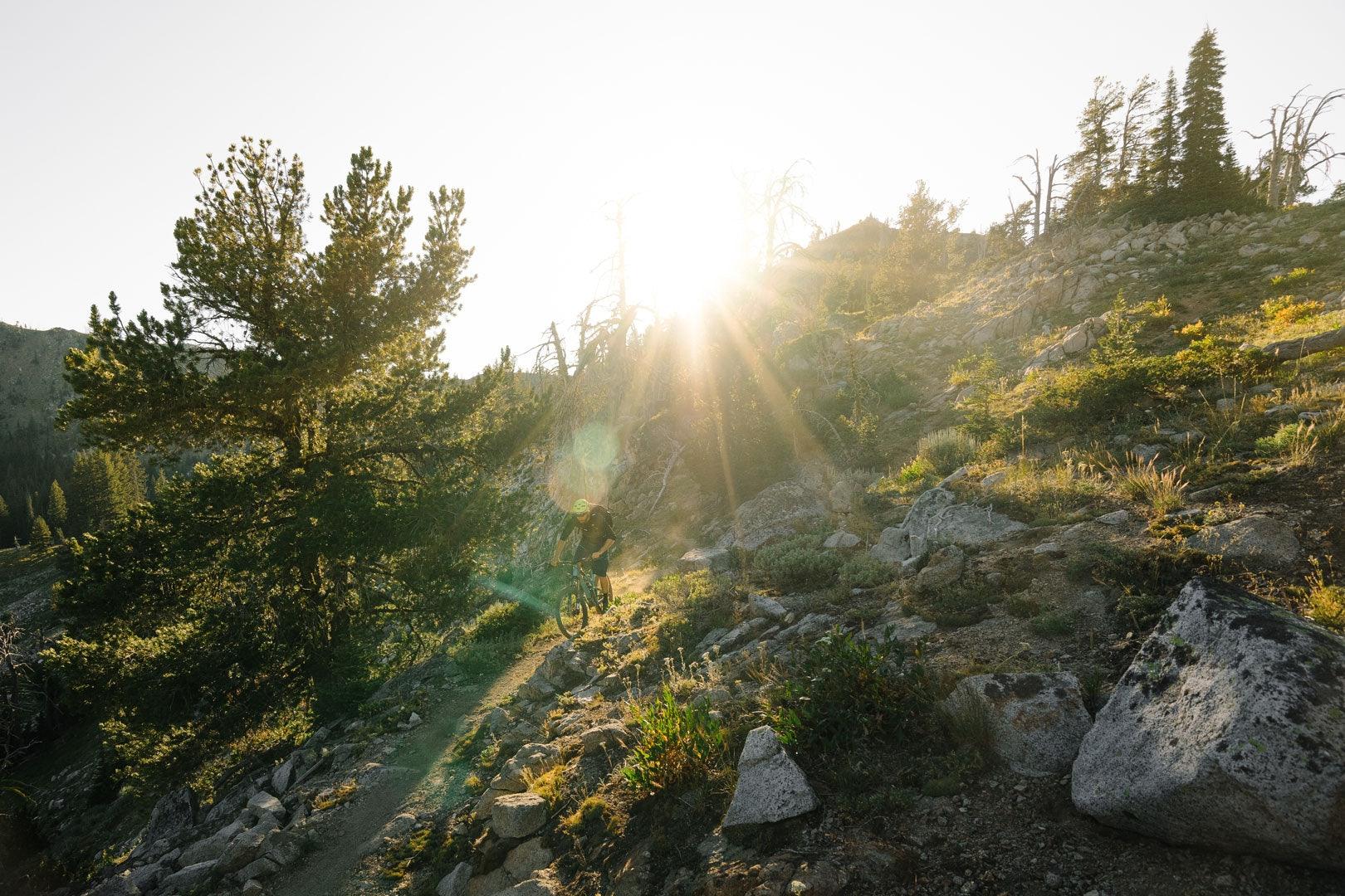 Tillak - Blog